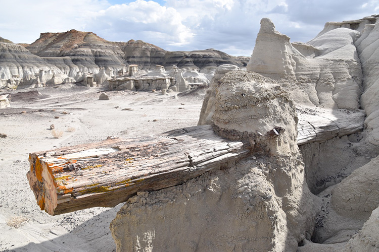 Bisti Badlands
